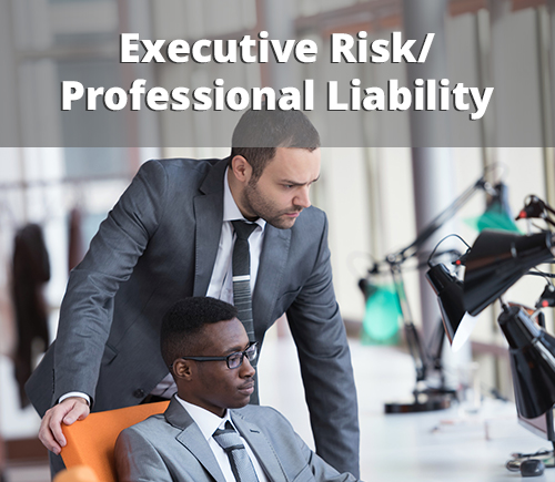 Allstar Executive Risk/Professional Liability